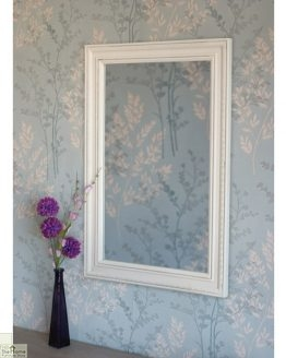 Devon Rectangular Wall Mirror_1