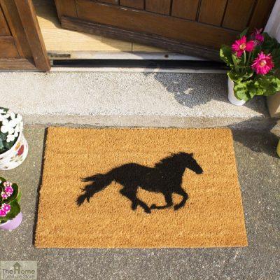 IMG-HORSE3 web