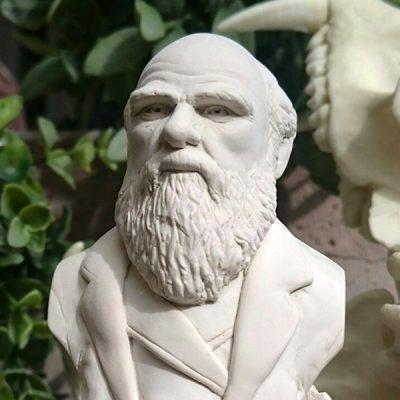 Charles Darwin Bust Ornament_2