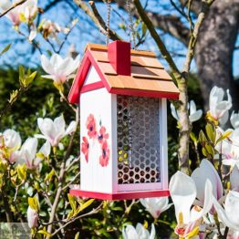 Poppy Design Hanging Bird Feeder_1