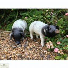 Pig Down Garden Ornament