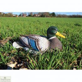 Mallard Duck Garden Ornament