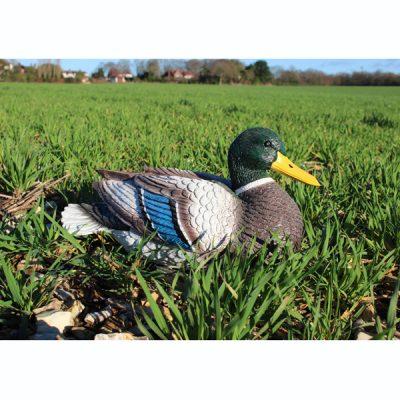 Mallard Duck Garden Ornament_1