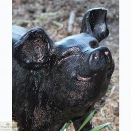 Bronze Pig Garden Ornament_1