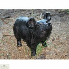 Bronze Pig Garden Ornament