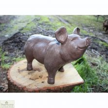 Brown Pig Garden Ornament