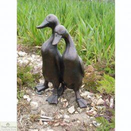 Duck Pair Garden Ornament