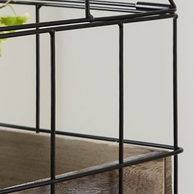 Greenhouse Tabletop Herb Planter_2