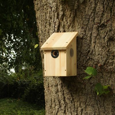 Camera Nest Box_1