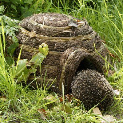 Igloo Wildlife Hedgehog House_5