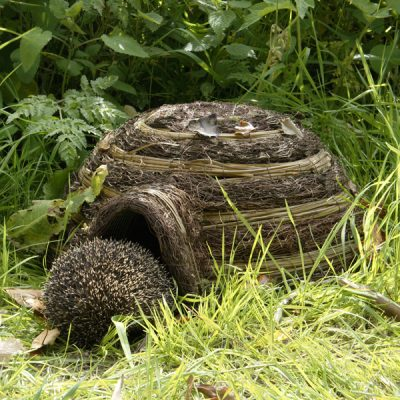 Igloo Wildlife Hedgehog House_6