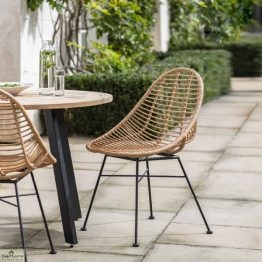Hampstead Scoop Dining Chair Pair_1