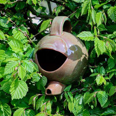 Green Ceramic Teapot Bird Nester_3