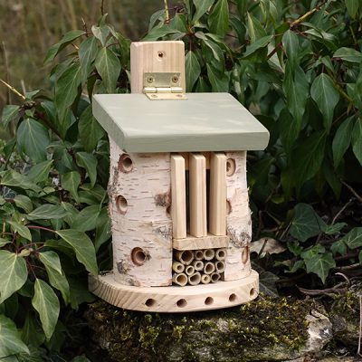 Bug Barn Insect House_4