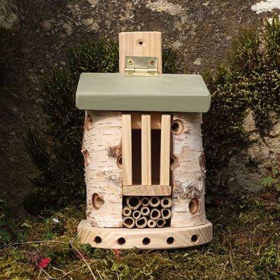 Bug Barn Insect House_3