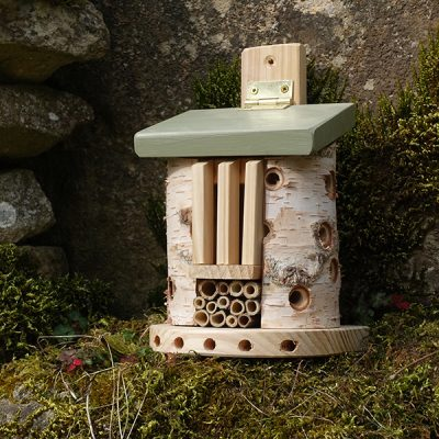 Bug Barn Insect House_5