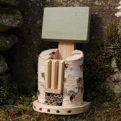 Bug Barn Insect House_6