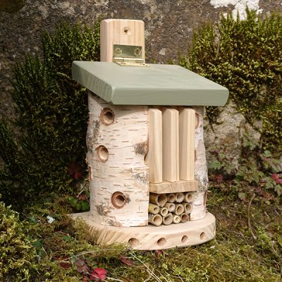 Bug Barn Insect House_2
