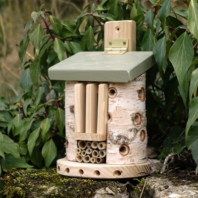 Bug Barn Insect House_1
