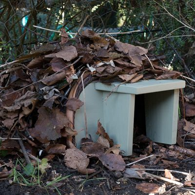 National Trust Hedgehog House_3