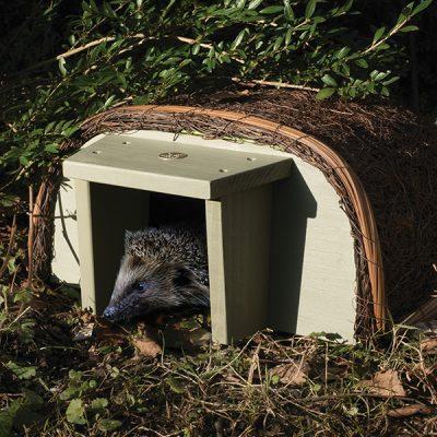 National Trust Hedgehog House_1