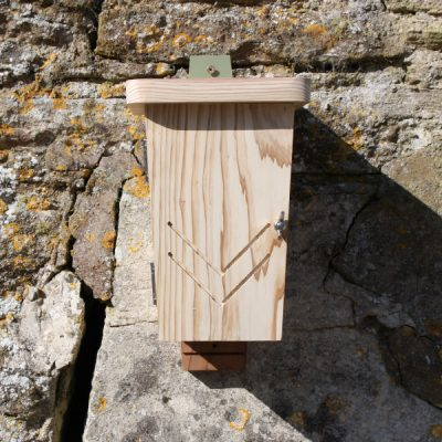 Original Wall Mounted Bat Box_2