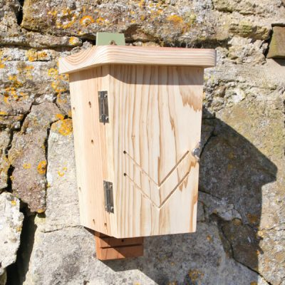 Original Wall Mounted Bat Box_1