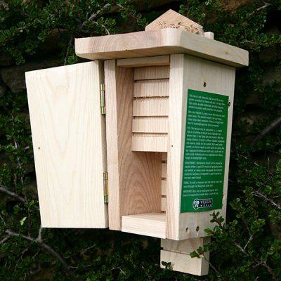 Original Wall Mounted Bat Box_4