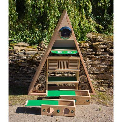 Educational Pyramid Insect Habitat_2
