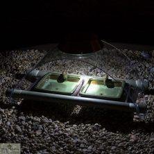 Solar Illuminated Hedgehog Feeder