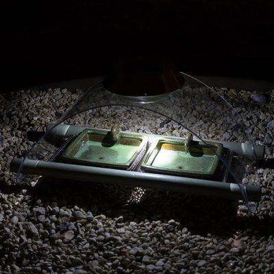 Solar Illuminated Hedgehog Feeder_1
