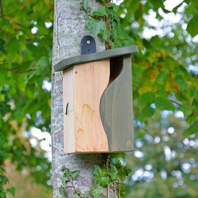 Mounted Bird Box Nester_2