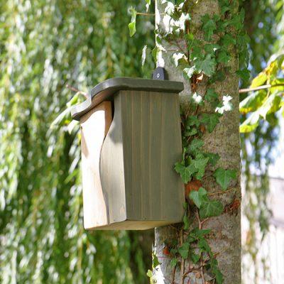 Mounted Bird Box Nester_3