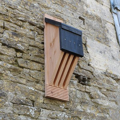 Vincent Pro Bat Box_5