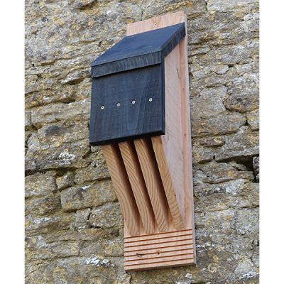 Vincent Pro Bat Box_4