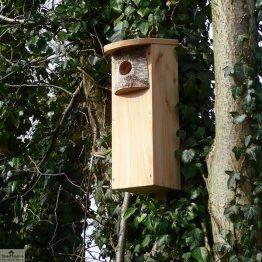 Woodpecker Bird Box Nester_1