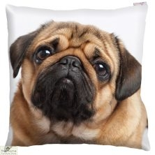 Pug Dog Print Square Cushion