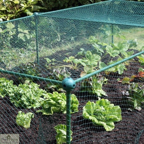 Garden Fruit and Veg Protective Cage