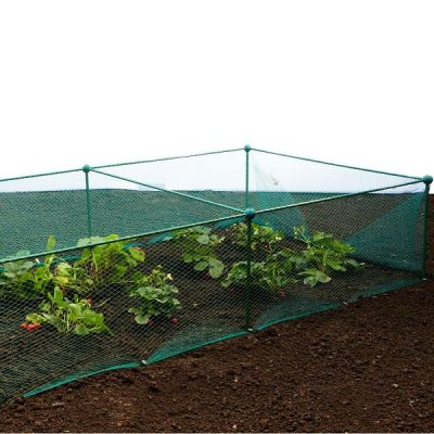 Garden Fruit and Veg Protective Cage_4