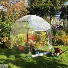 Mid Level Pop Up Poly Cloche 1.25m x 1.25m x 1.35m High