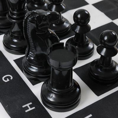 Giant Garden Chess_2